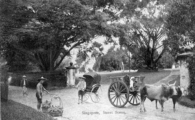 Street scene showing a hawker selling fruits, a rickshaw puller and a bullock cart at the entrance of Teutonia Club