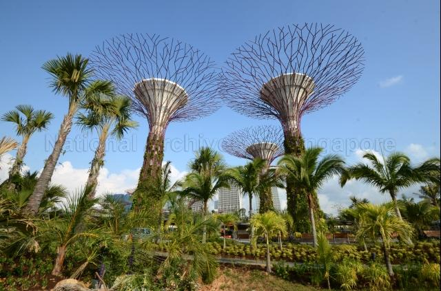 Gardens by the Bay at 18, Marina Gardens Drive - View of supertrees