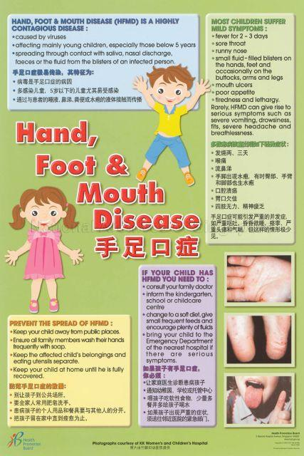 hand mouth and foot disease